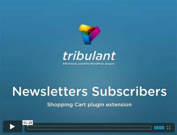 Newsletters Subscribers Extension Plugin