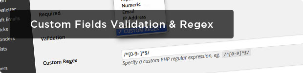 Custom-Fields-Validation-and-Regex