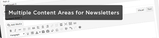 Multiple-Content-Areas-for-Newsletters