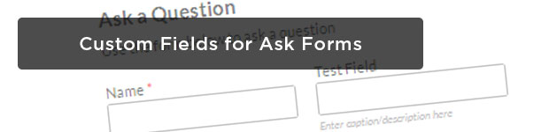Custom-Fields-for-Ask-Forms