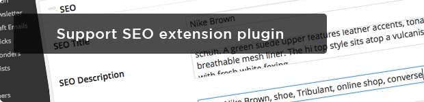 Support SEO extension plugin