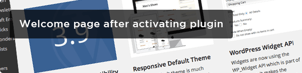 Welcome-page-after-activating-plugin