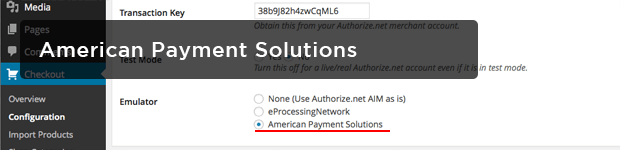 American-Payment-Solutions