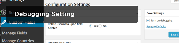Debugging-Setting