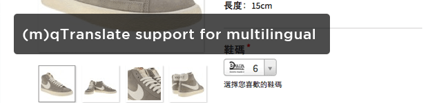 (m)qTranslate-support-for-multilingual