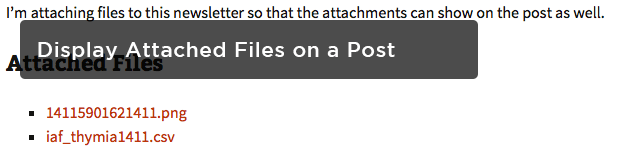 Display-Attached-Files-on-a-Published-Post