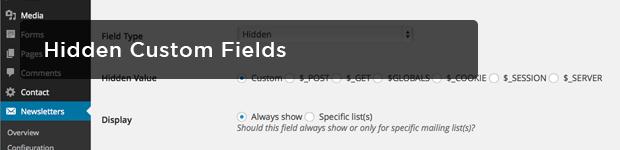 Hidden-Custom-Fields--