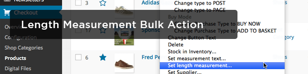 Length-Measurement-Bulk-Action
